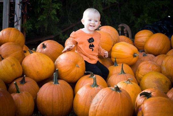 Pumpkinpatch_0067small