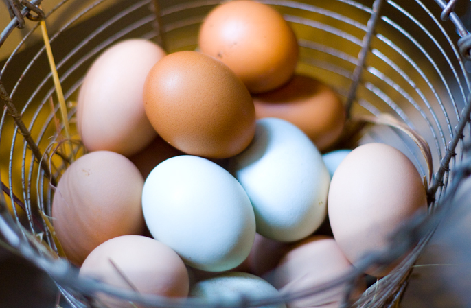 Eggssmall